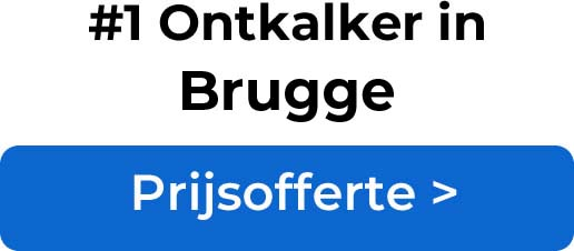 Ontkalkers in Brugge