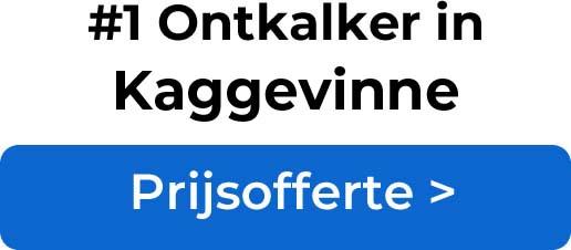 Ontkalkers in Kaggevinne