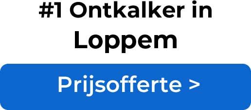 Ontkalkers in Loppem